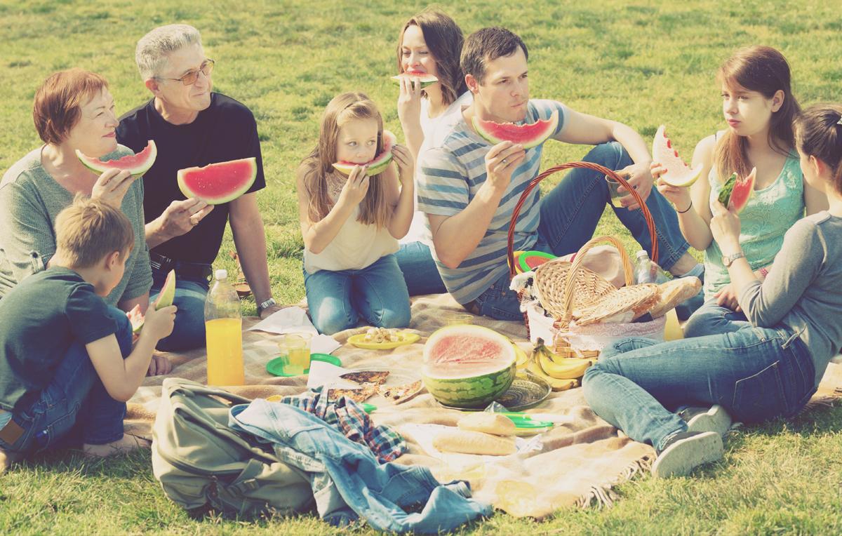 ¡Preparando el encuentro ideal en un día de picnic!
